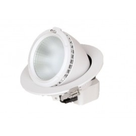 Dowlight Led empotrable prof.orient.28w